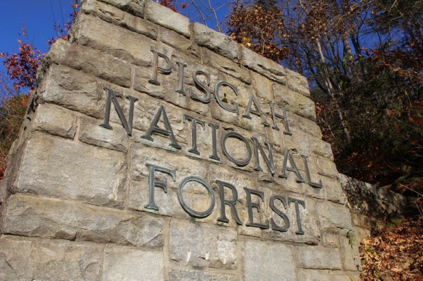 A 10-to-15-year management plan is under development for Pisgah and Nantahala national forests. Jack Igelman/Carolina Public Press