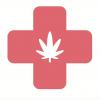 Cherokee council sparks up medicinal marijuana initiative