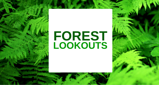 Forest Lookouts