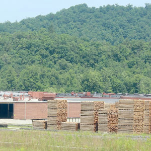 Oak Valley Hardwoods sawmill in Graham County