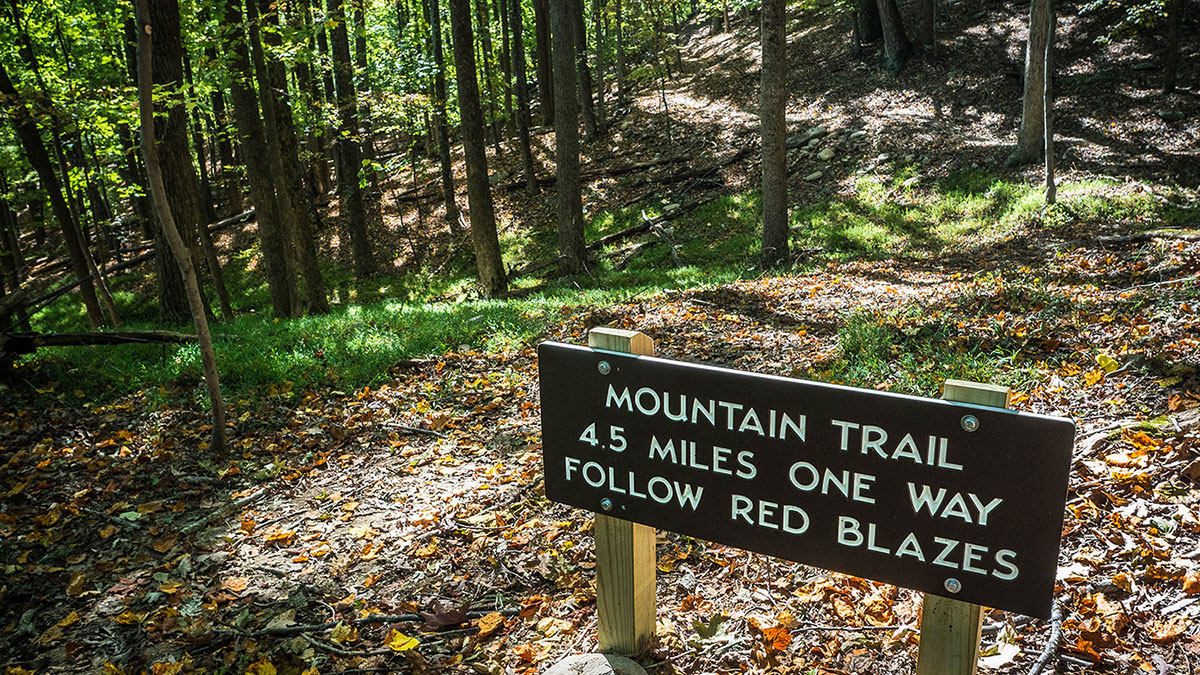 Although facilities and offices at NC state parks are closed, trails like this one at Pilot Mountain remain open and offer an opportunity for exercise while maintaining social distancing during the coronavirus pandemic. Courtesy of the NC Trails Program